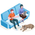 Home Visit Icon